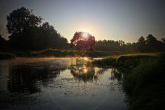 #PerfectMorning #Sunrise #Trees #River #Poranek #Staw #Słońce #Rzeka