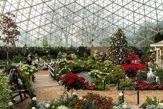Christmas Trips, Christmas Travel, Holiday Lights, Christmas Lights, Milwaukee Wisconsin, Big Island, Lake Tahoe, The Good Place, Things To Do
