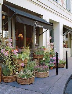 Container Plants, Container Gardening, Garden Shop, Home And Garden, Market Garden, Flower Shop Interiors, Design Interiors, Paris Store, Paris Shopping