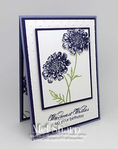CCREW0314HF Purple Field Flowers Birthday by stampinandstuff - Cards and Paper Crafts at Splitcoaststampers