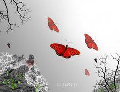 """Butterfly Trio ...."""" Flamenco""""   A Fine Art Print 8x10 by NikkiTyTomkins #graphicart #butterfilies #artprint"""