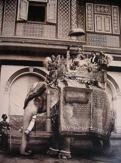The excessive opulence of India - here the young Maharajah of Bansda takes a ride on a caparisoned royal elephant; take note of the chattra, the umbrella-like canopy suspended above the maharajah's head, a symbol of Indian royalty. Vintage Pictures, Old Pictures, Old Photos, Colonial India, Royal Indian, Age Of Empires, History Of India, Vintage India, Indian Heritage