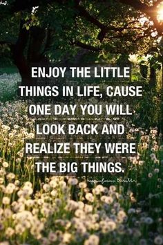 The vow :Enjoy the little things in life : quotes and sayings