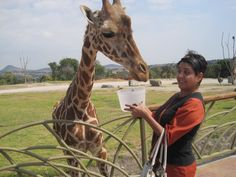 November 2011  Africam Safari in Puebla, feeding Giraffes good times.