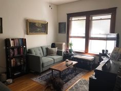 I finally feel comfortable in my studio apartment in Minneapolis, MN : AmateurRoomPorn
