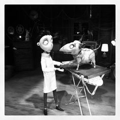 Victor and Sparky #comicconit #comicconsw #frankenweenie #comiccon #sdcc