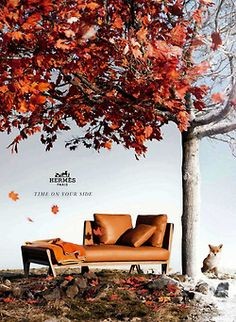 hermes fall collection | PASSIONS, DEFINED.