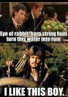 funny harry potter | funny, harry potter, jack sparrow, pirates of the caribbean, rum ...