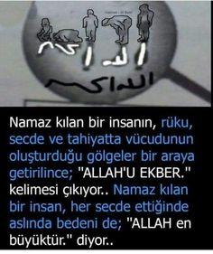 Good Sentences, Allah Islam, Interesting Information, Sufi, Women Looking For Men, Einstein, Quotations, Psychology, Prayers