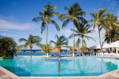 Welcome to Sunscape Curaçao Resort, Spa & Casino Caribbean Homes, Caribbean Vacations, Vacation Destinations, Vacation Spots, Vacation Resorts, Vacation Ideas, All Inclusive Resorts, Hotels And Resorts, Last Minute Vacation Deals