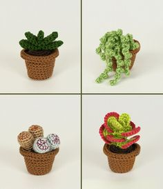 PDF Succulent Collections eight realistic potted plantPlease note that I sell PDF crochet patterns see Delivery Information below NOT completed items A crocheted succulent never needs watering never dies and is always in peak condition With Crochet Cactus, Crochet Flowers, Succulent Pots, Succulents Garden, Succulent Care, Red Contrast Color, String Of Pearls, Crochet Instructions, Cactus Y Suculentas