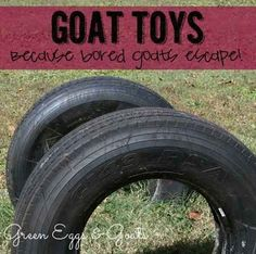 18 Creative Goat Toys!