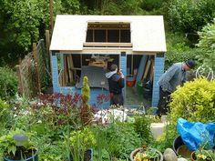 New shed project 13.  May 23rd 2013. It's time to paint the shed blue, in spite of the rain, wind and hailstones!
