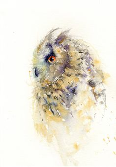 Contemporary limited edition print of my original watercolour OWL Printed using epson HD pigment onto archival quality 190 gsm paper. Owl Watercolor, Watercolor Animals, Watercolor Paintings, Owl Paintings, Watercolours, Animal Art Prints, Art Deco Posters, Owl Print, Wildlife Art
