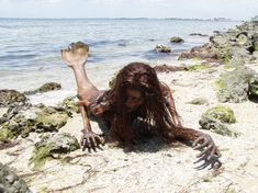 A mermaid is a mythological aquatic creature that is well known as a half human and half aquatic creature. Various cultures throughout the world would have similar figures. It is only a matter of ugly or pretty, boy or girl. Last time I have posted about Scary Fish Stranded on the Beach that I got …