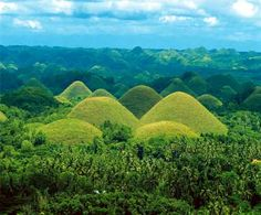 The Chocolate Hills is an unusual geological formation in Bohol province, Philippines. There are at least 1,260 hills but there may be as many as 1,776 hills spread over an area of more than 50 square kilometres (20 sq mi).  They are covered in green grass that turns brown during the dry season, hence the name.