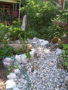 Dry Riverbed - Front Yard