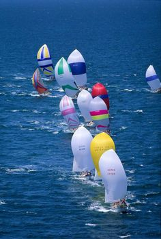 Line of colorful spinnakers