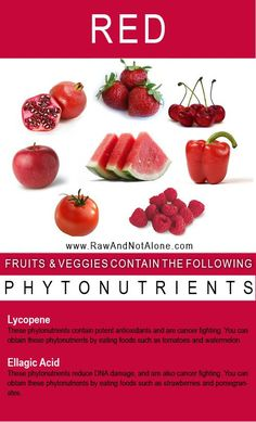 Red Fruits and Veggies That Contain Phytonutrients Health And Nutrition, Health And Wellness, Health Fitness, Nutrition Store, Fitness Goals, Healthy Tips, Healthy Recipes, Eat Healthy, Nutrition Sportive