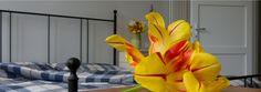 La Casa dei Lumi è entrato a far parte della famiglia #BookingExpert... Benvenuti! ☺ Booking Expert - www.bookingexpert.it