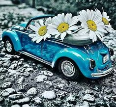 ❥●❥ ♥ ♥ ❥●❥ Miniature Photography, Cute Photography, Abstract Photography, Love Wallpaper, Wallpaper Backgrounds, Auto Volkswagen, Daisy Love, Miniature Cars, Cute Little Things