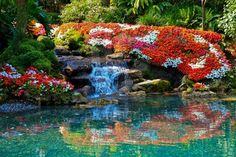 A beautiful flower garden with a waterfall in Tropical Southern Florida, USA, America