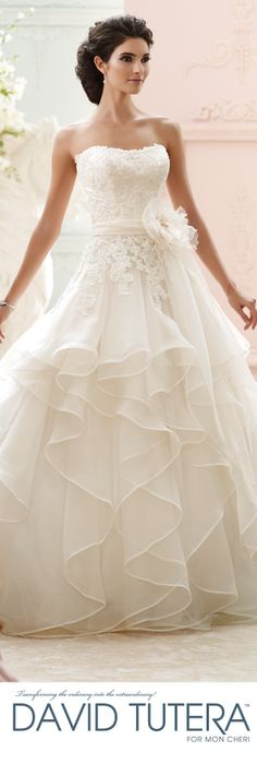 Exclusive World Preview of David Tutera for Mon Cheri Fall 2015 Bridal Collection like the top and the lace on the skirt, not so the layers