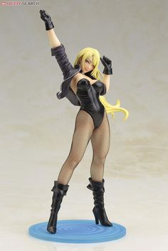 [Close]  DC Comics Bishoujo Black Canary (Completed) Item picture1