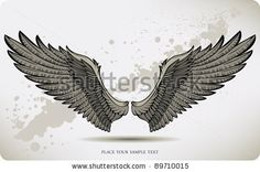 Wings, hand drawing. Vector illustration. by Mur34, via ShutterStock