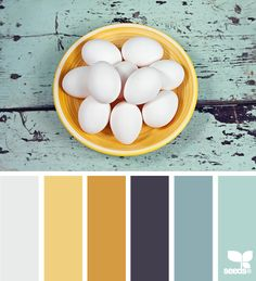 color fresh: egg white, butter yellow, marigold, navy purple, faded blue, robin's egg blue