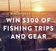 http://virl.io/krKTgCmR - Win $300 for fishing trips and gear on amberjack.com! Sweeps ends  12/31/2015