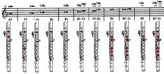 Flute Finger Chart For Begginers Standard Piccolo Instrument