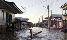 スライドショー:アマゾン川流域で浸水被害 http://bit.ly/1FzkzVh