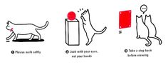 Korean Museum Uses Adorable Cats in Visitor Etiquette Guide | In the Air: Art News & Gossip | ARTINFO.com
