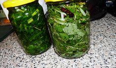 Pažitkový olej: Pažitku nasekáme na drobné kousky. Na dno sklenice nalijeme trošku oleje a pěchujeme bylinku. Pažitku zhruba v polovině... Korn, Pickles, Planer, Cucumber, Smoothie, Pesto, Herbs, Canning, Vegetables