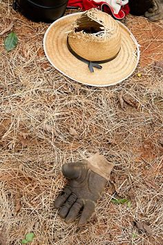 work in the coffee harvest Tree Story, Rubber Tree, Cowboy Hats, Harvest, Coffee, Kaffee, Ficus Elastica, Cup Of Coffee
