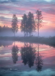 Great Photos, Cool Pictures, Misty Dawn, Peaceful Places, Life Photography, Finland, Mists, Serenity, Sunrise
