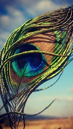 Feather like a beautiful girl. Radha Krishna Pictures, Lord Krishna Images, Radha Krishna Photo, Krishna Art, Radhe Krishna Wallpapers, Lord Krishna Wallpapers, Krishna Flute, Krishna Statue, Baby Krishna