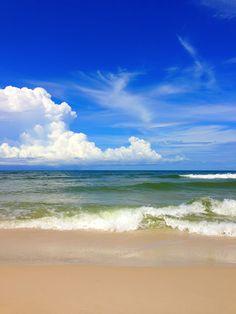 Pet-friendly beach vacation to Cape San Blas, FL.  Yay Tonka gets to go!!!