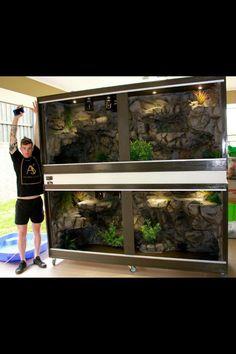 Reptile Zoo, Reptile Habitat, Reptile Cage, Bearded Dragon Habitat, Bearded Dragon Cage, Snake Terrarium, Aquarium Setup, Aquarium Fish, Snake Cages