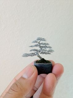 Micro Mame Informal Shohin Bonsai Tree Wire Art Sculpture handcrafted by Ken To | eBay