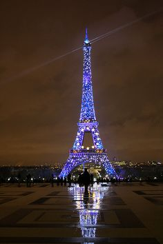 I could watch this every night for the rest of my life.    Tour Eiffel by night