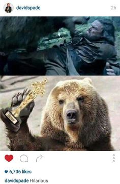 David Spade posted this picture of Leonardo Dicaprio finally getting an Oscar from the bear in his new movie: