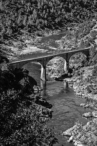 Photograph - No Hands Bridge Black And White by Sherri Meyer