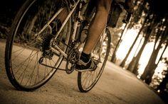 L'Eroica 2014 Foto Dettaglio Cambio Ingranaggi e Catena Bicicletta
