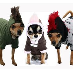 Mohawk Hoodies for small dogs! So cute! Small dogs with 'tude!