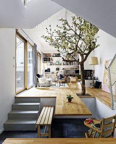Tree in living room. Goals!