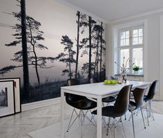 Old Pine Trees! Wallpaper.