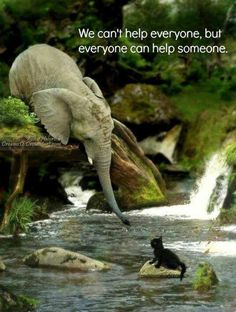 We cant help everyone, but everyone can help someone, be ever watching for that someone