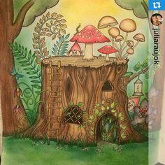 Jardim Colorido @jardimcolorido Instagram photos   Websta